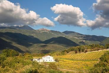 panorama vigneto castelfranco rieti